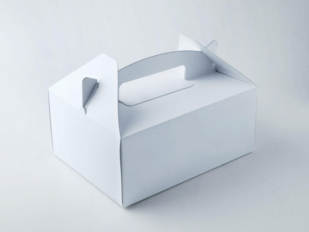 キャリー箱